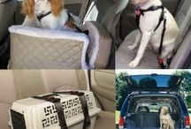 3 Tips Pada Cara Pilih The Right Pet Car Seat Cover by Pamela R. Cabang