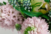 Pink Hyacint Inpiration