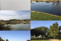 GOLF / Fotos Golf