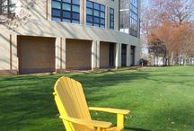 When Adirondacks Go To College / Adirondack chairs I have found during campus visits