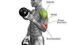 Cvičení - exercises