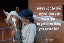 Parelli / Alle kan lære å kommunisere med hesten! Parelli horsemanship lærer deg hvordan