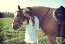 Photography {Equine/Country} / by Christy Hall