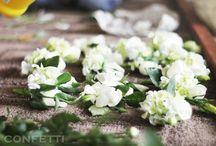 WHITE SYMPHONY / http://www.confetti.vn/
