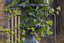 Garden containers and planters / by Cheri Fazioli