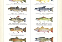 Trout Gifts for Anglers