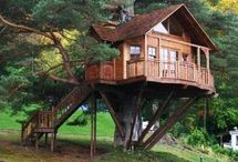 jardin et cabane