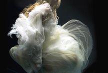 Fantasy / by Patricia Rocha