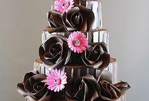 cioccolato / cioccolato ancona