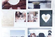 blog PLcafe
