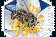 znaczki owady