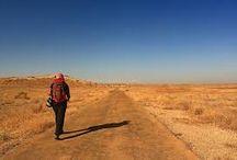Desert Trekker