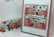 Stampin up 2016 2017 card ideas