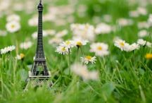 La vert France. ...