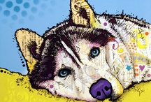 Animals / by Lauren Widrick