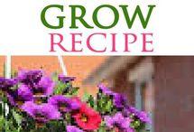 Miracol grow recipe - home made