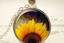 My sunflowers / sunflowers