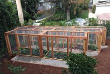 Veggie Garden Raised Beds & Hutches
