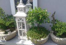 Donica doniczka misa na bonsai
