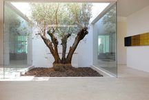 Courtyards indoor/outdoor