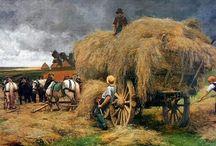 Herfst oogst