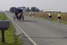 Amish in Arthur, Illinois
