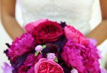 Wedding Bells / by Crystal Hailey