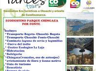 caminatas para hacer / caminatas a lugares ecoturisticos de choachi