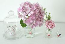 Bouquets, fleurs et plantes