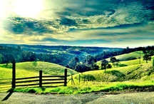 A Picture Guide of Amador County / Amador is a beautifully scenic county in Northern California...come see for yourself!
