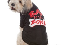Lyric Culture for Pups / Lyric Culture shirts for your little four legged friend.