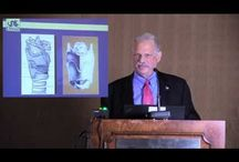 Symposium Sessions / Videos of sessions and lectures from The Voice Foundation Annual Symposium
