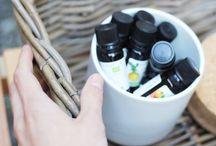 guide huiles essentiels