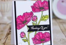 Stamping / All things Stamping, cardmaking, coloring etc.
