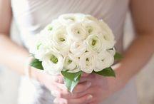 My Future Wedding / by Elizabeth Sage
