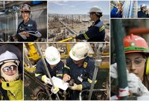 BP Starts Recruitment Campaign to Attract Future Leaders