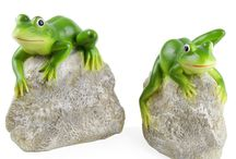 Frogs & Toads