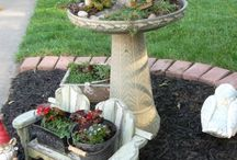 Fairy Gardens / by Theresa Parks Curless