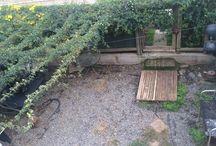 Mi patio preparándose para el verano