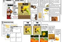 Science / Science Ideas for Primary / by Fabulous in FIrst