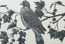Charles Tunnicliffe illustrations / Featuring work of C F Tunnicliffe from various books.