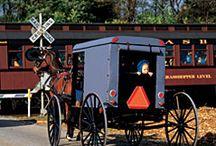 Amish / by Ann Hicks