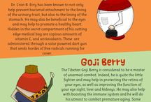 Healthy Berry Recipes and Facts
