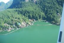 Wild Air Story Board: British Columbia