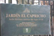 MADRID / https://www.cuarzotarot.es/