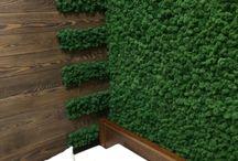 интерьер вертикальное озеленение