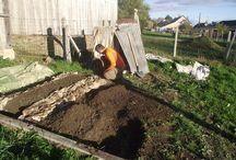 Mon potager / Jardin et potager en permaculture de Ma Cuisine a du sens