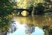 Clove Lake / Staten Island Neighborhoods / by RealEstateSINY.com