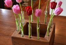 Vaser af vanille-rør