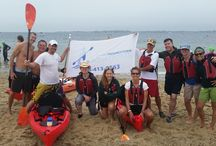 """2014 Swim For Life / Swim For Life 2014.  Provincetown Aquasports donated all of our kayaks for the """"paddler flotilla"""""""